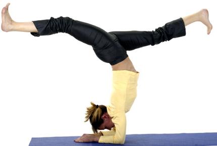 Yoga Vidya - Skorpion - Vrischikasana