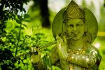 Neues von Yoga Vidya Westerwald