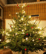 Rezept des Monats: Weihnachtsmenü