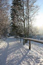 Winter Spezial: Yoga Ferienwoche 7 Tage zum Preis von 5 Tagen