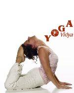 Neuigkeiten aus den Yoga Vidya Zentren