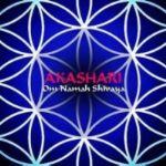 Ashramband Akashari: Interview mit Harry Friedrich