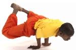 Übung des Monats: Einfacher Pfau – Yoga Asana Mayurasana