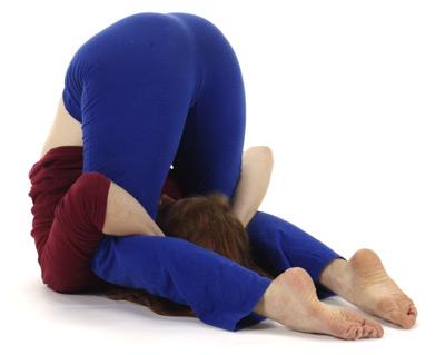 yoga vidya  pflug  halasana