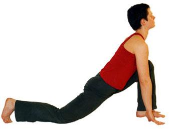 yoga vidya  sonnengruß mittelstufe
