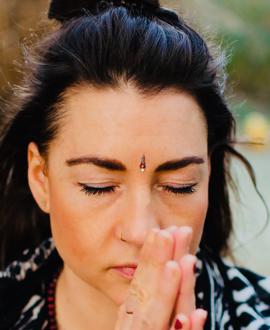 Vishnu-Shakti Wende