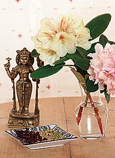 Vipassana, Metta und sanftes Yoga
