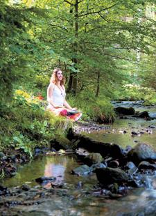 Waldmeditationen