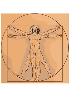Psoas - Der Muskel der Seele