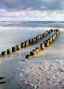 Yoga-Retreat an der Ostsee - Finde zu dir