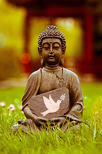 Sprechen wie ein Buddha