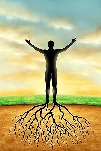 Meditation der Ist-heit - is-ness - Online Kurs Reihe