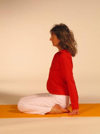 Hormon Yoga Basisseminar - Yogalehrer Weiterbildung - Live Online