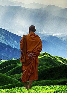Buddhistische Meditation Kursleiter Ausbildung - Live Online